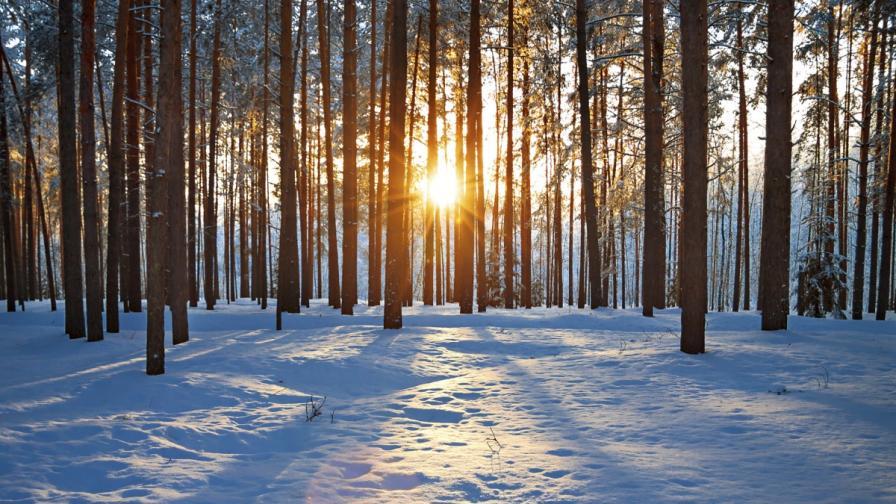 Минус 28 градуса в Севлиево, студ сковава цяла България