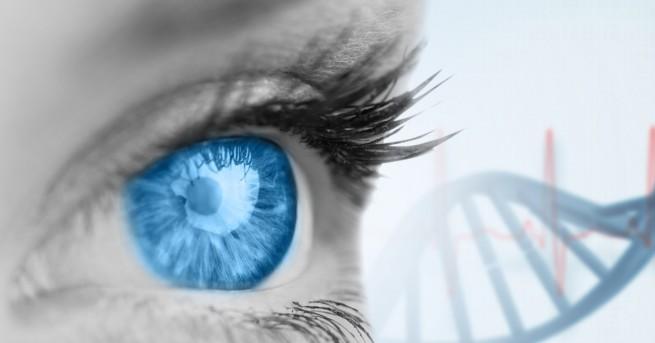 Клетките и гените остават активни дори след смъртта на тялото.