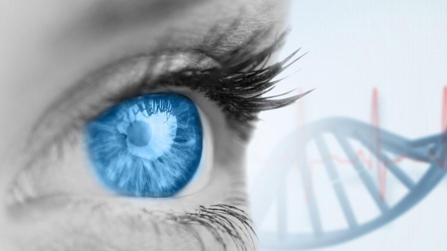 Гените остават активни и след смъртта на тялото