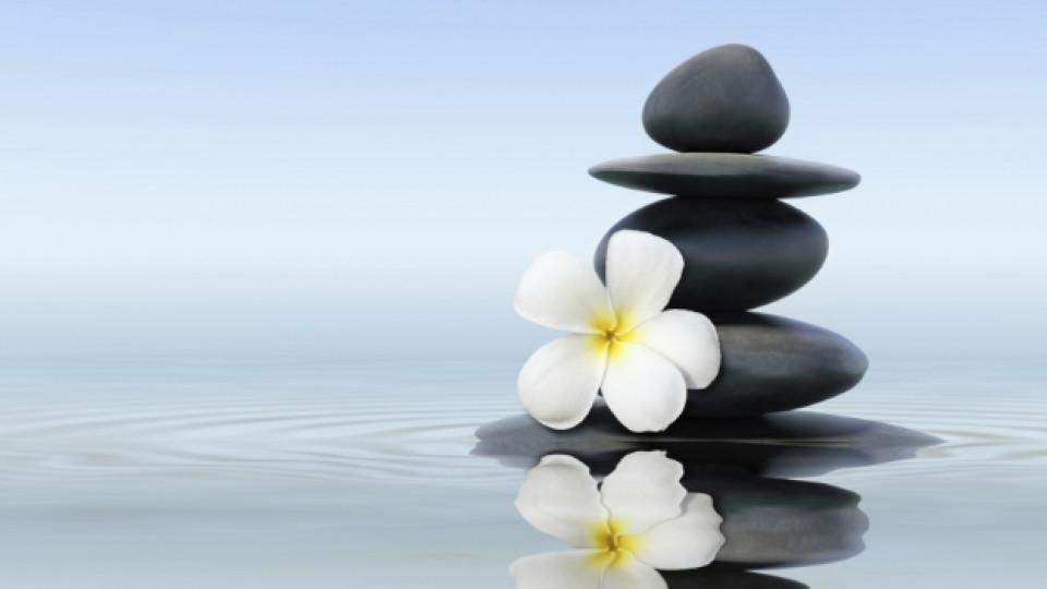 Как да контролираме стреса и тревогата