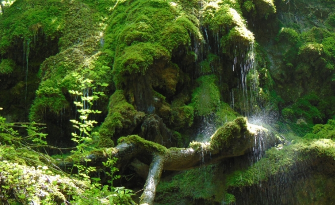 Изкушение или изпитание са водите на Сливовдолския водопад