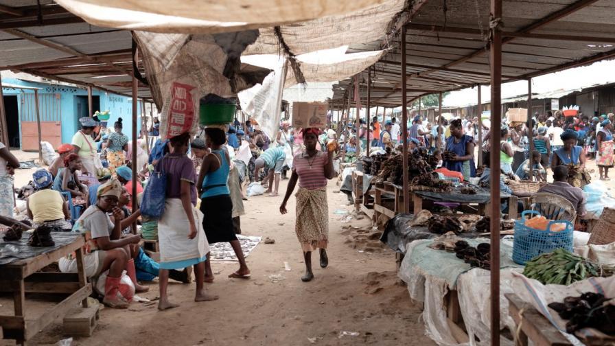 Жълта треска от Африка е новата световна заплаха