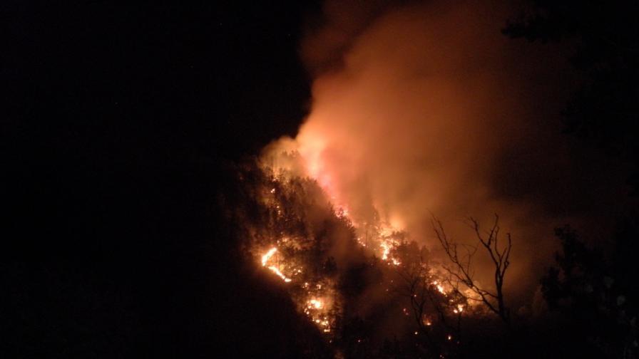 Пожар обгърна Кресненското дефиле