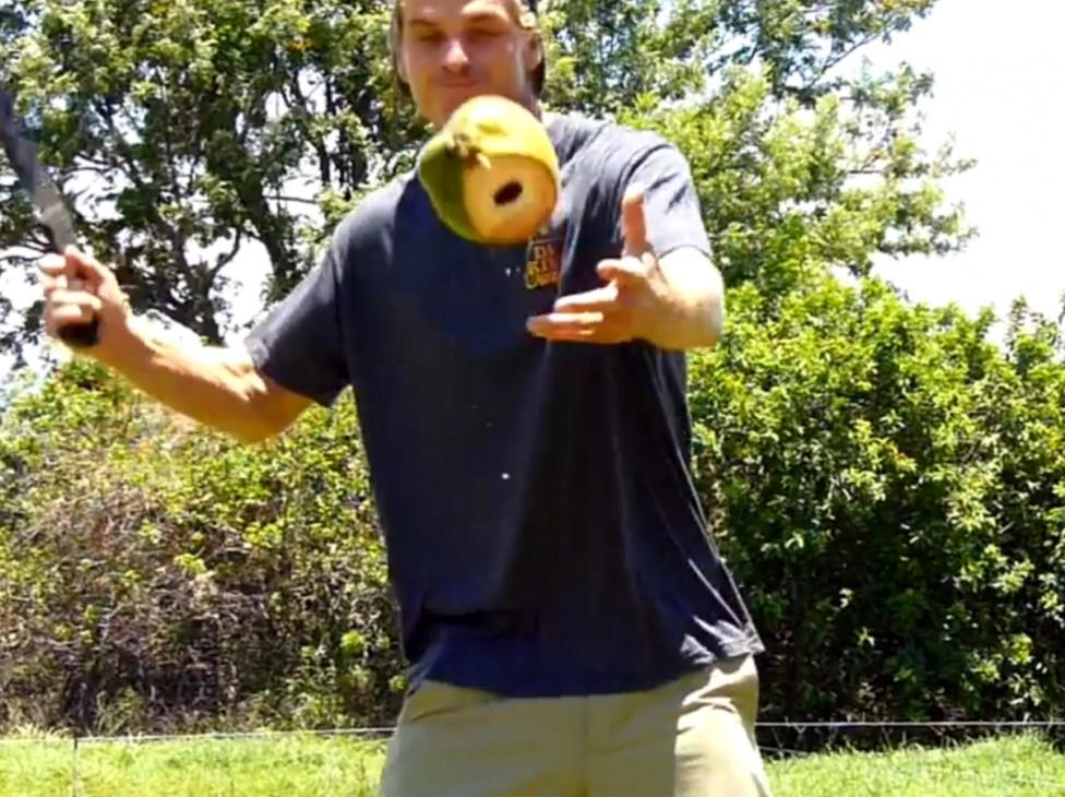 - Той събира кокосови орехи, за да преследва вълните