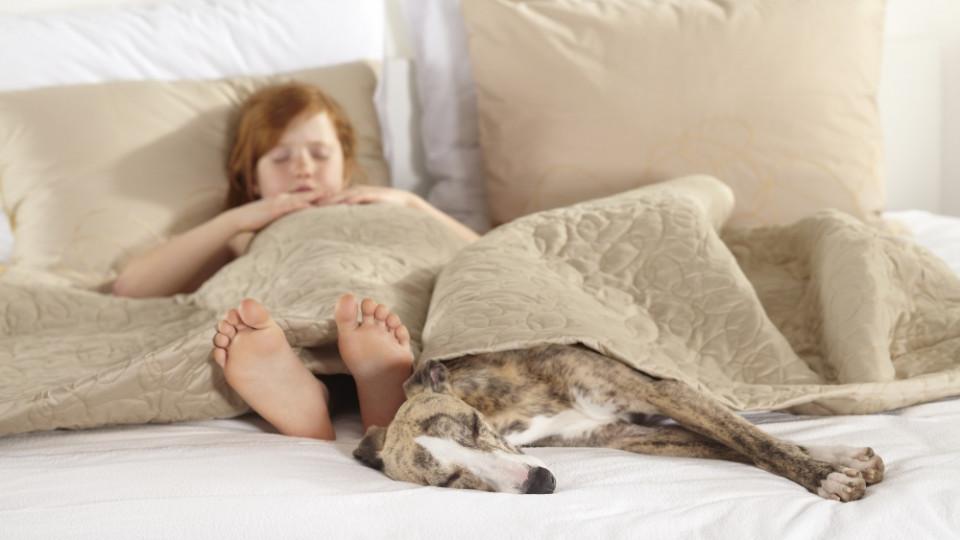 Как да спите сладко, сладко като бебе?