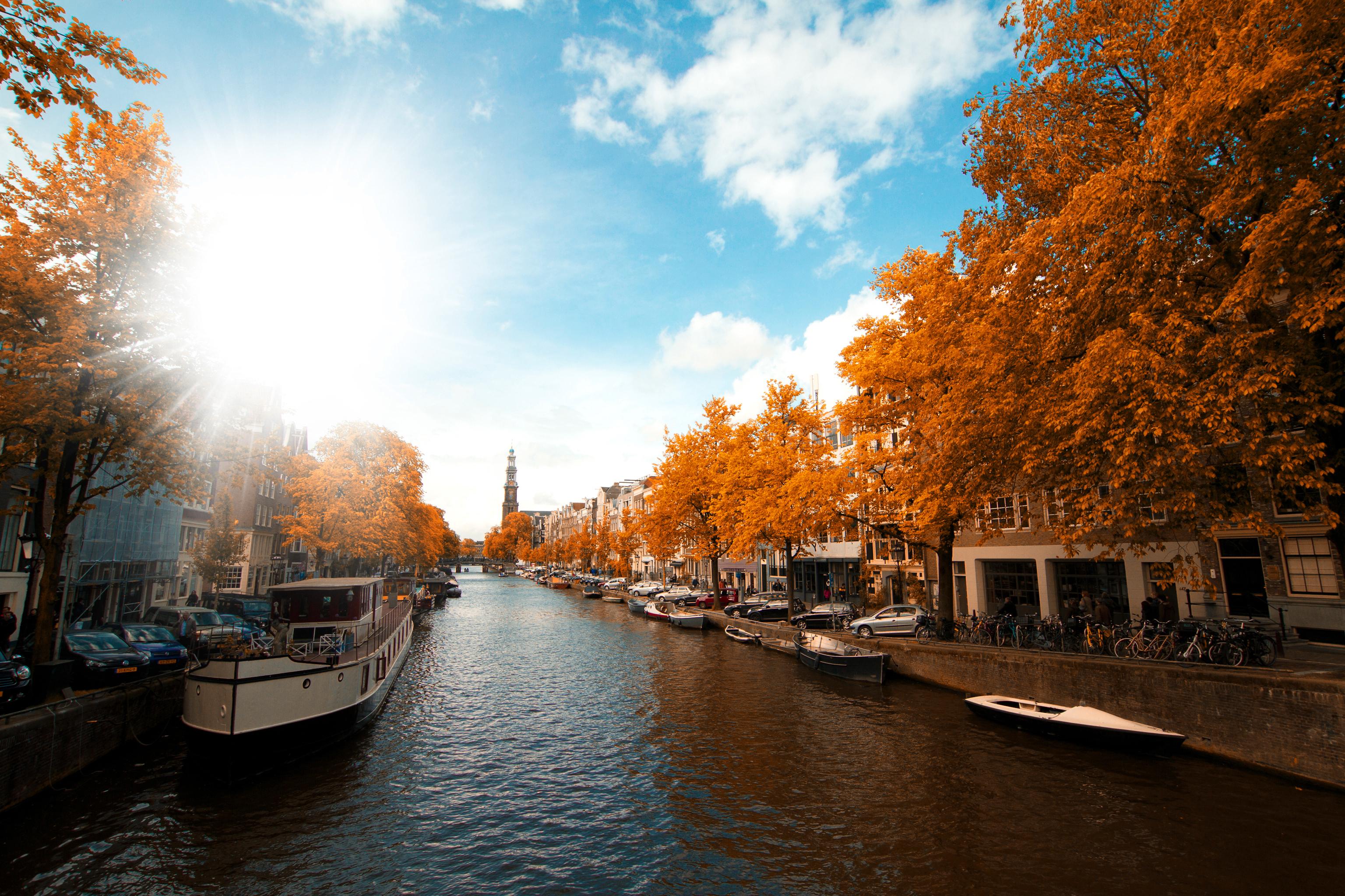 """Амстердам, чист, спокоен, подреден. Пълен с цветя, колела.На всеки би му се приискало да посети този град.<br /> Големият художникРембрандтвори тук, аАнеФранк, малката писателка, е родена.Градът е столица на Кралство Нидерландия (Холандия).Името наАмстердамидва от Амстелердам. В превод означава """"бентнаАмстел"""", реката, преминаваща през града.Възникнал като рибарско селце в края на XII век, в резултат на развитието на търговията. Амстердам се превръща в един от най-големитепристанищни градове в света.През XIXи XXв.Амстердам се разраства и се образуват множество нови квартали и предградия.Кварталът на Червените фенери съществува на днешното си място от самото му основаване през XIV в., когато вместо кафенета, тук са се разполагали дестилационни фабрики, обслужвани предимно от моряци и търговци от различни националности.Нуждаещите се от освежаване и компания и забогатели след дългите пътувания моряци, все по-силно привличат вниманието на жените с лоша репутация.Така за кратко време луксозните публични домове, ръководени от амбициозни бизнес дамисе превръщат в едни от най-популярните места.Оставяйки малка пролука между червените завеси на стаите, гледащи към улиците, дамите подканят мъжете с леко, но предизвикателно потропване по прозорците."""