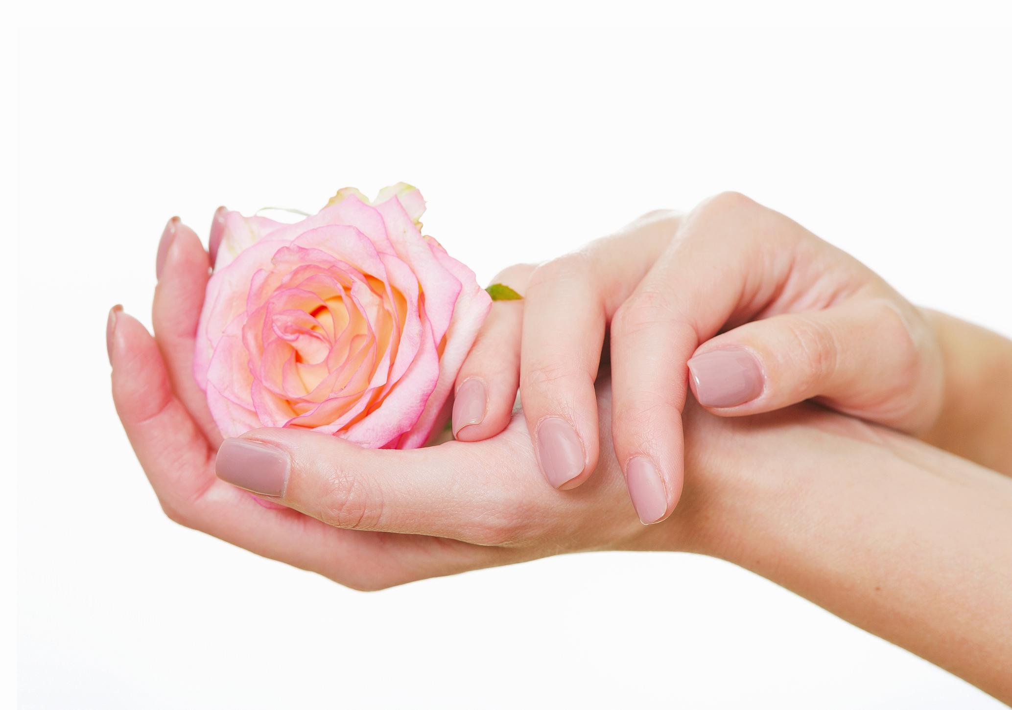 Розово масло - Ако сте от дамите, които нямат миялна машина вкъщи, а ежедневно мият съдовете си ръчно, вероятно знаете как понякога препаратите изсушават кожата на ръцете ни. В този случай препоръчвам розовото масло или розова вода. То е с перфектно балансирано съдържание на омега-3 и омега-6 есенциални мастни киселини - от съществено значение за поддържане на кожата хидратирана и стегната. Спомага и за подновяването на клетъчните мембрани и регенерирането на кожата на ръцете.