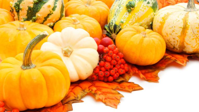 тиква есен плодове