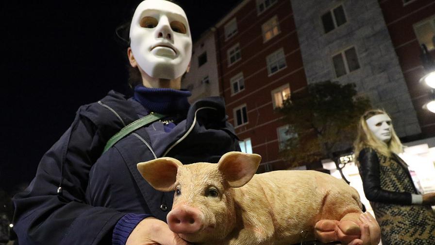 Защо вегани със страшни маски обикаляха София снощи
