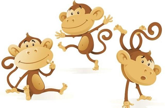 Резултат с изображение за маймуни с трици не се ловят