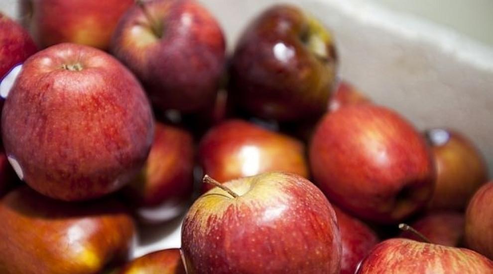 Производители: След 10 години няма да има българска ябълка заради вноса от...