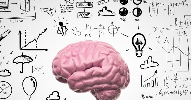 Четенето на книги, ученето на нови езици, решаването на логически