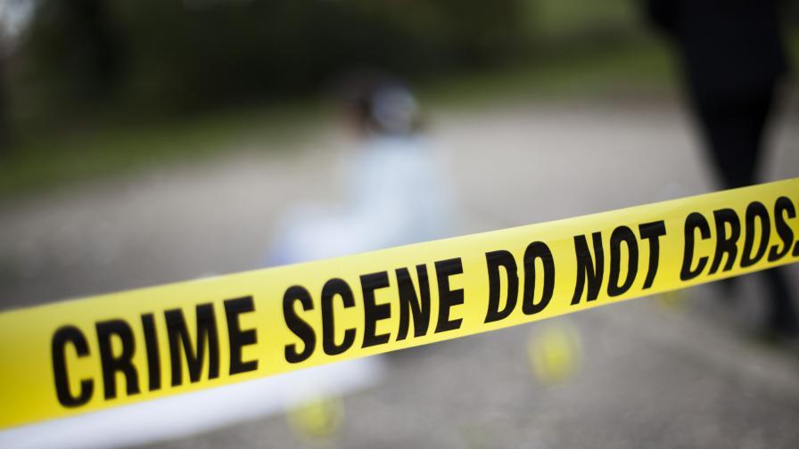Арнаудова: Детето в Стрелча вероятно е стреляло само