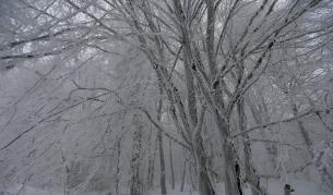 <p>Вторник– студ и бурен вятър, опасно време в цяла България</p>