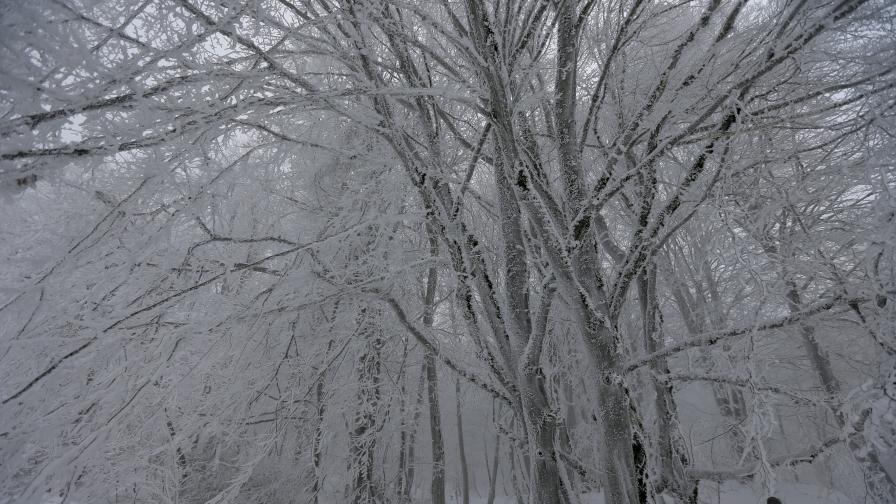 <p>Вторник&nbsp;&ndash; студ и бурен вятър, опасно време в цяла България</p>