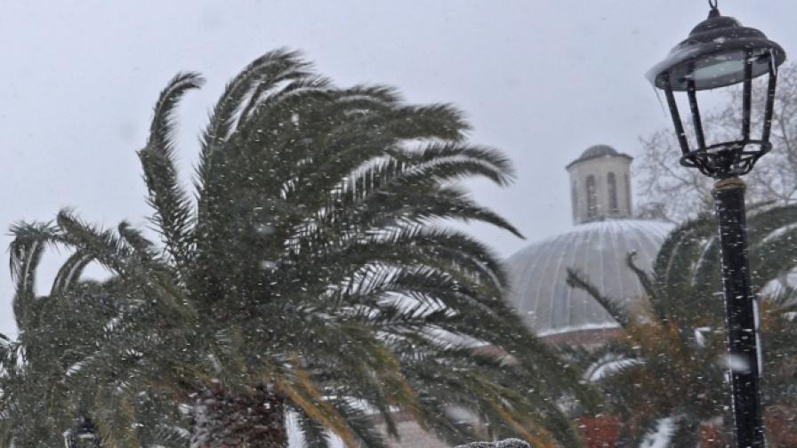 Сняг покри пясъците на Сахара