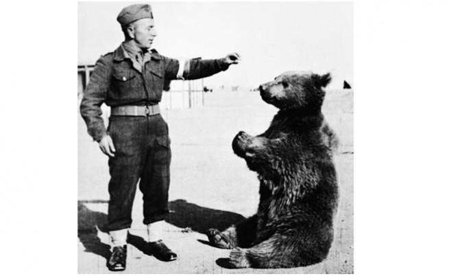 Един необичаен герой от Втората световна война - мечокът Войтек