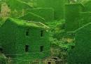 """Гоки - селото, което природата """"погълна"""" с великолепие"""