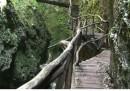 Дяволската пътека - прелест, сгушена в Родопите