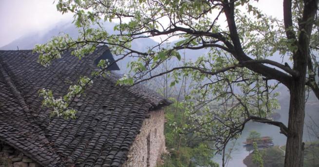 Снимка: Има ли спасение за българското село?