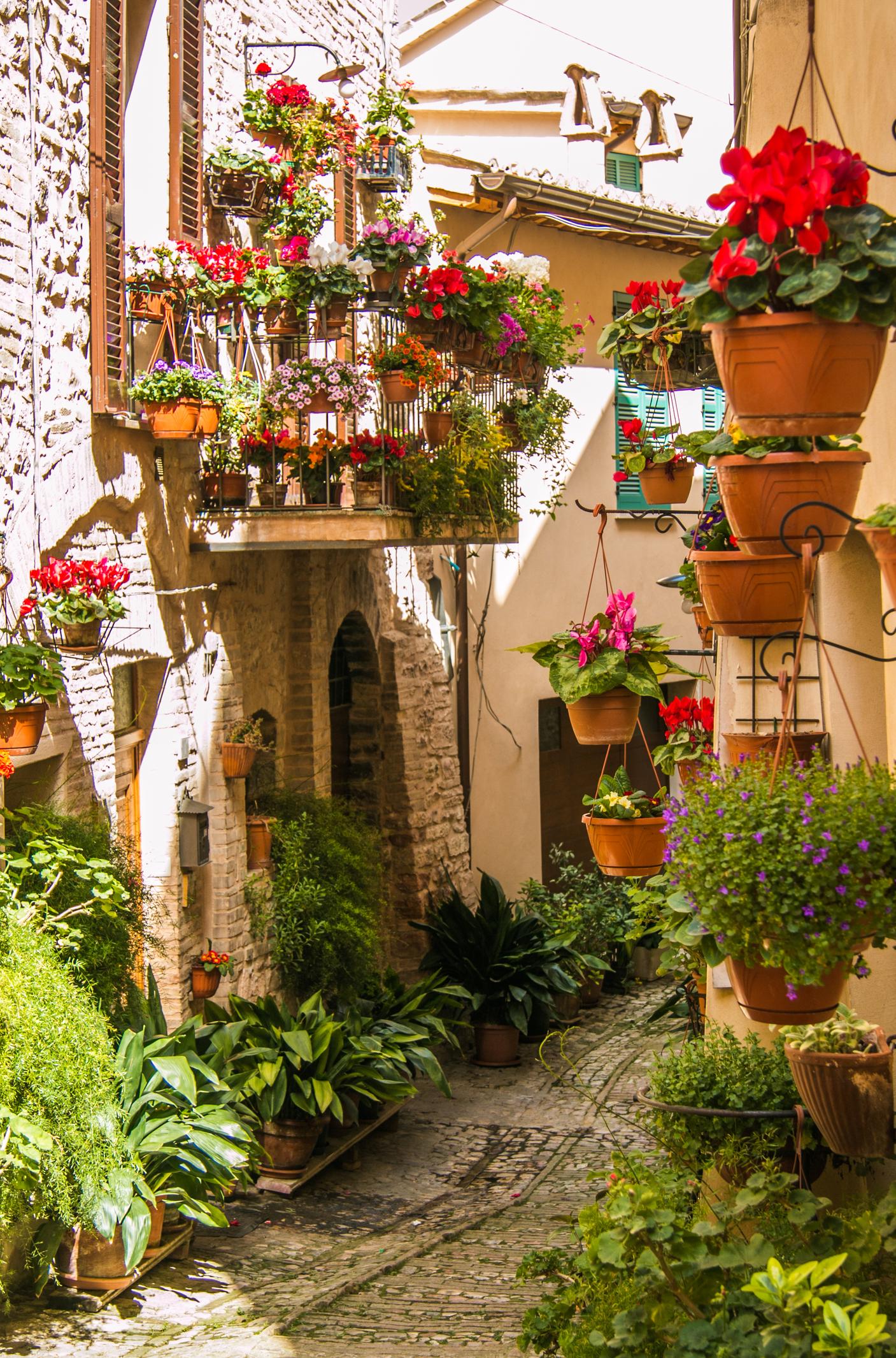 Спѐло е градче и община в Централна Италия, провинция Перуджа