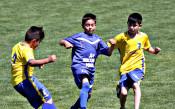 8 детски отбора от областите Монтана и Враца в спор за Купата на АБФ