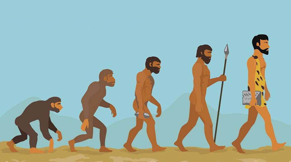 Учени възпроизведоха виртуално общия предшественик на Хомо сапиенс