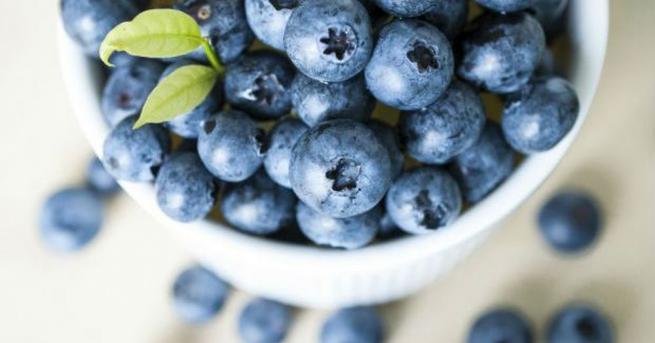 Дивите боровинки съдържат съединения, които помагат за възстановяването на кръвоносните