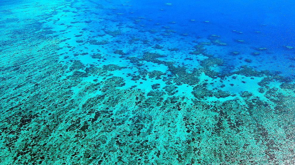 Наводненията в Северна Австралия заплашват Големия бариерен риф