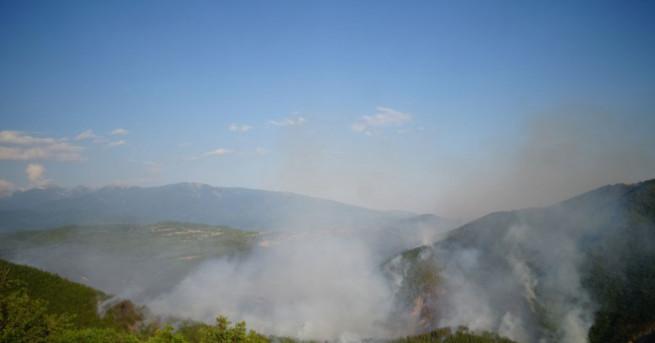 Овладян е пожарът в гората край село Стара Кресна. Има