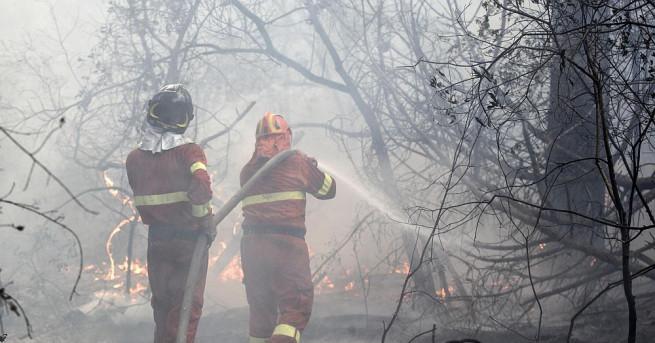 Италиански пожарникари се борят с над 1000 горски пожара при