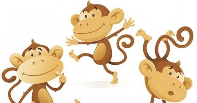 Снимка: Още любопитни факти за маймуните