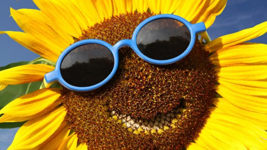 <p>Любопитни факти за лятото, които може би не знаете</p>