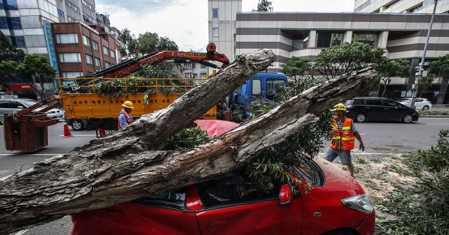 Проливните дъждове, които тайфунът Несат донесе в Тайван, причиниха наводнения,