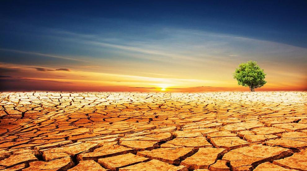 Откриха още една причина за глобалното затопляне