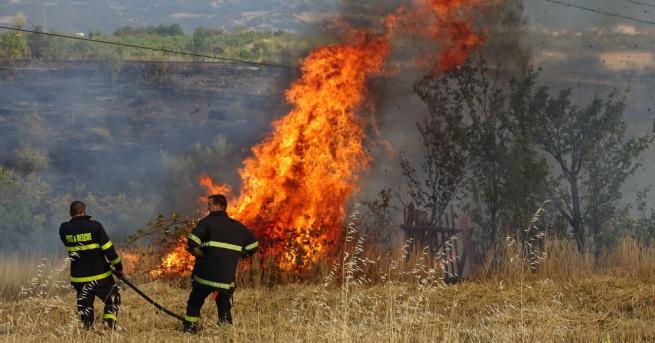 1000 лева глоба за палене на огън в гората 1000