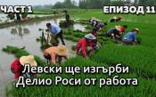 Левски ще изгърби Делио Роси от работа
