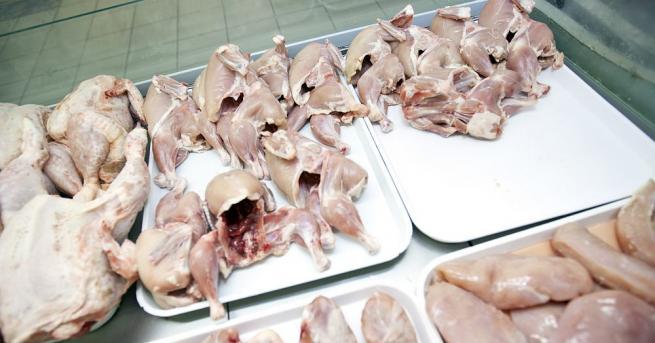 Снимка: Япония премахна временната забрана за внос на българско птиче месо