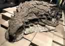 Как динозавър на 112 млн. г. се е превърнал в 3D статуя