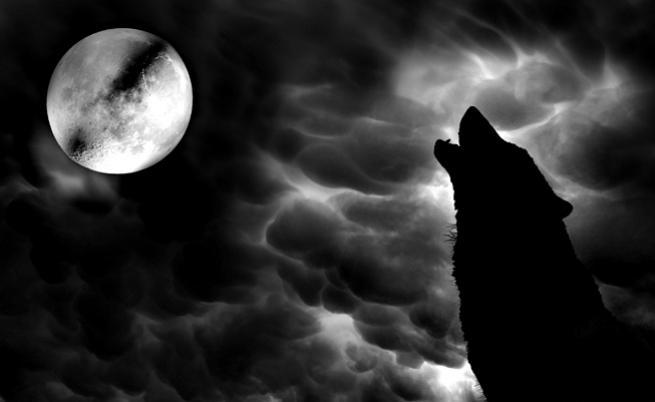 Един от най-големите страхове на европейците през XVI в. - върколаците
