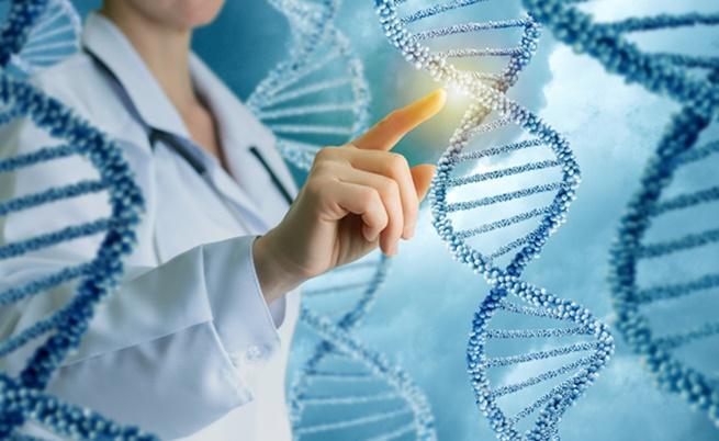 Какво образование ще завърши човек зависи от ДНК