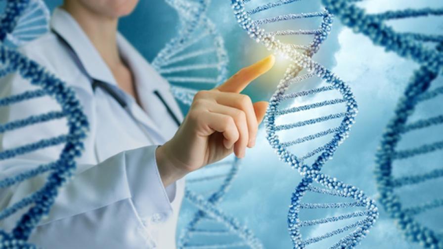 """Учени създадоха """"моливи"""" за редактиране на гени"""