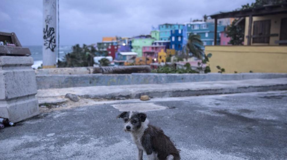 "Ураганът ""Мария"" връхлетя Пуерто Рико, взе жертва в Гваделупа..."