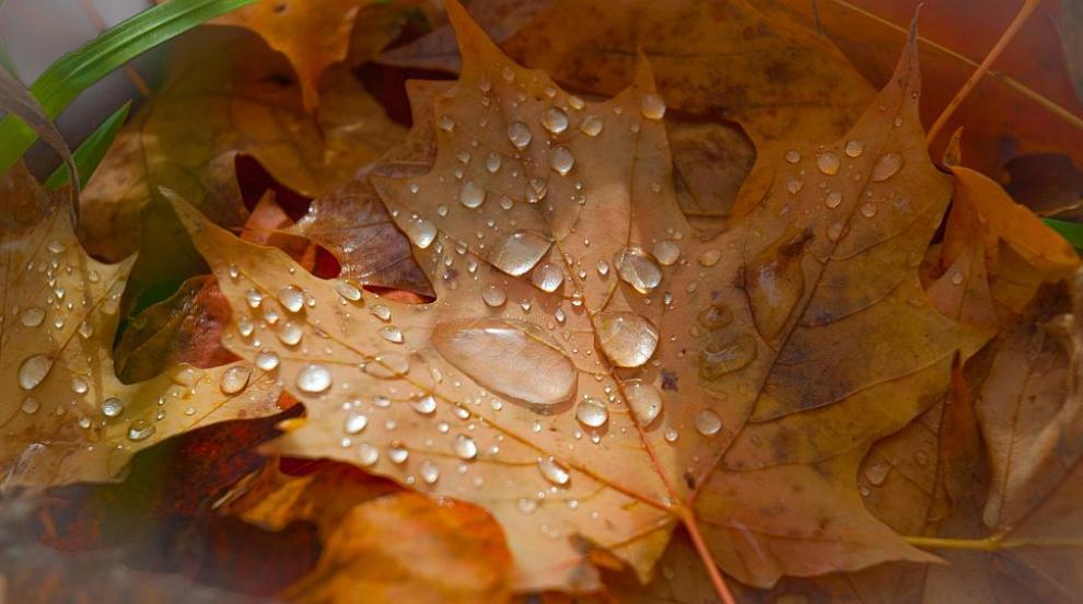 В сряда ни очаква типична есен