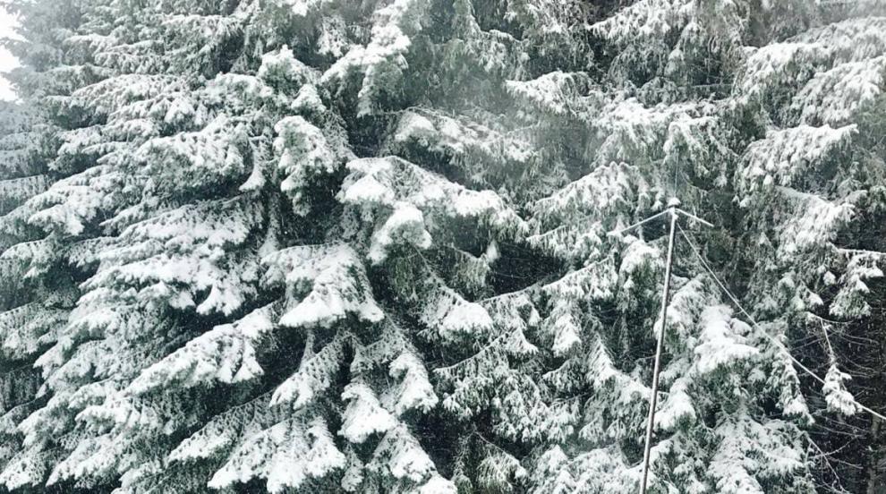Планински спасители откриха невредим бедстващ млад мъж в Пирин