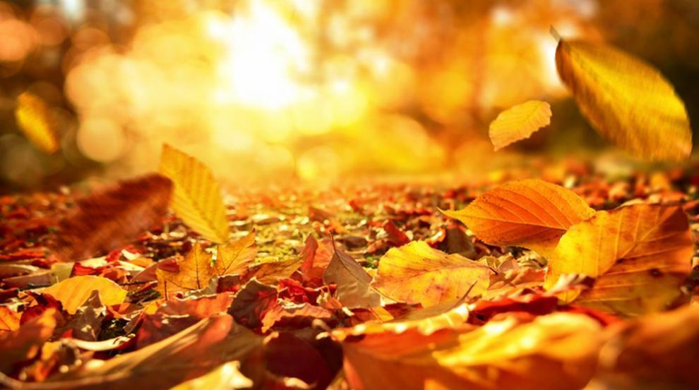 Какво време ни очаква до края на октомври?