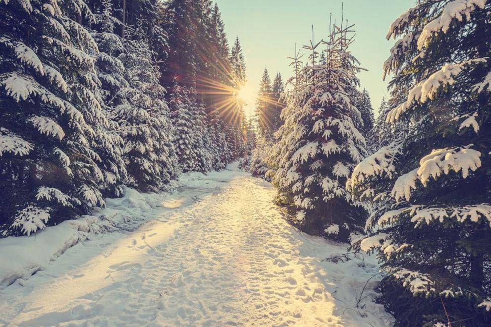 Резултат с изображение за зима