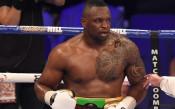 WBC назначи друг мач на Дилиан Уайт, ще обърка ли това сметките на Кобрата?