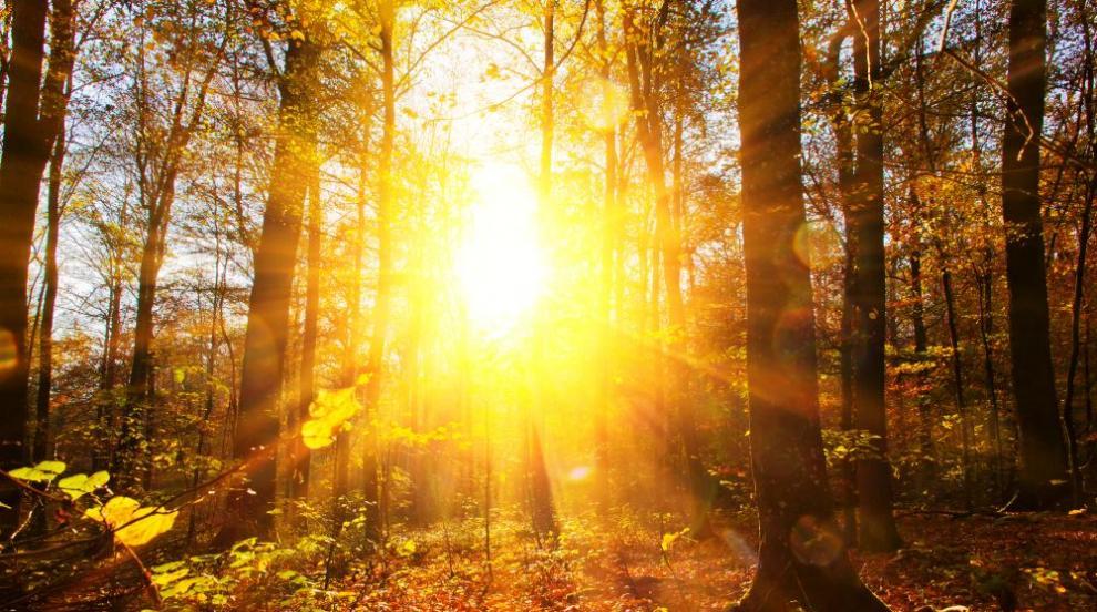 Декемврийско слънце и затопляне в началото на седмицата