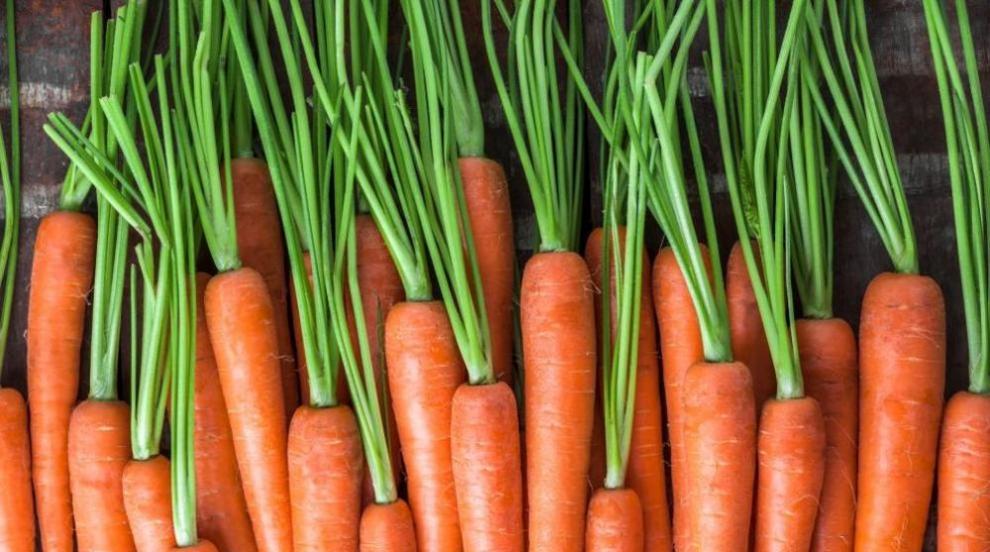 Три зеленчука, които трябва да хапвате през ноември (ВИДЕО)